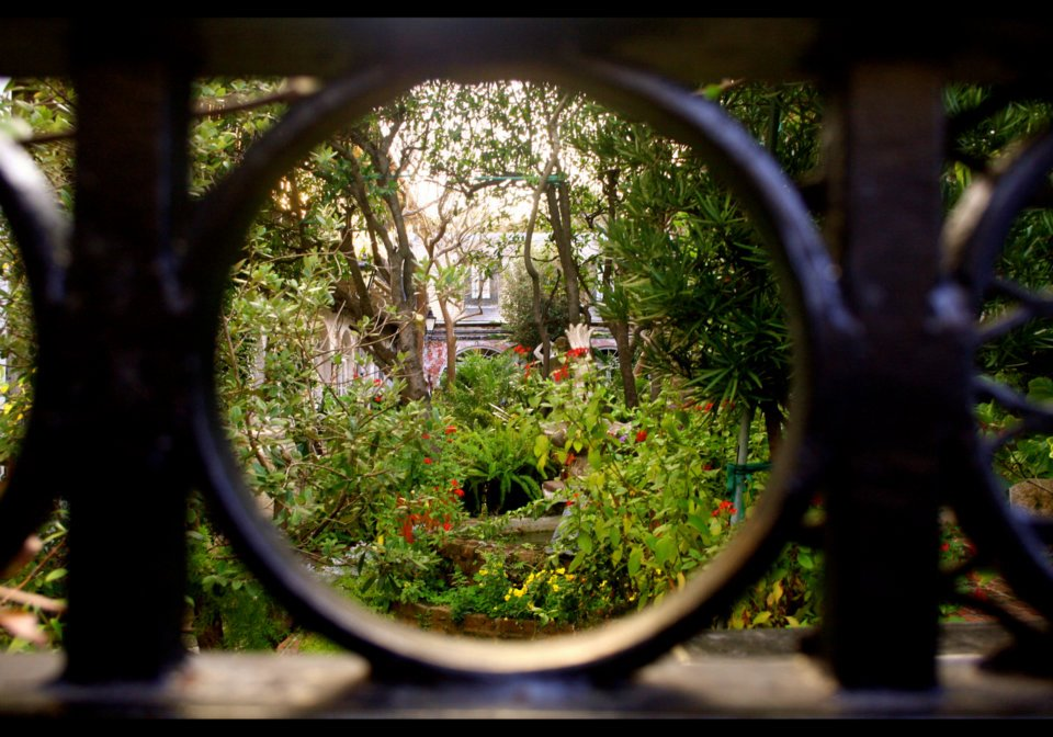 Peering into a typical French Quarter Courtyard.